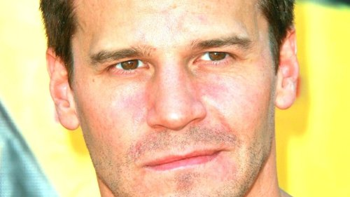 How Much Money Is Bones Star David Boreanaz Actually Worth?