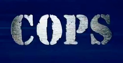 The Untold Truth Of COPS