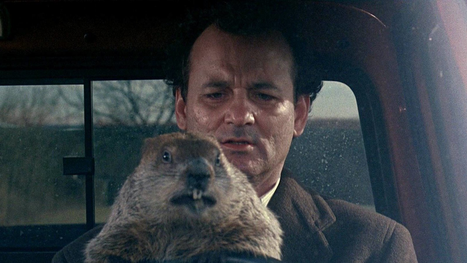 The Real Reason Bill Murray Hated Groundhog Day