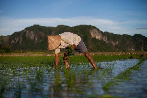 Australia, Indonesia and climate change