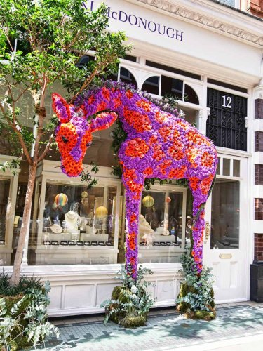 London in Bloom:Chelsea Flower Show & Floral Afternoon Tea