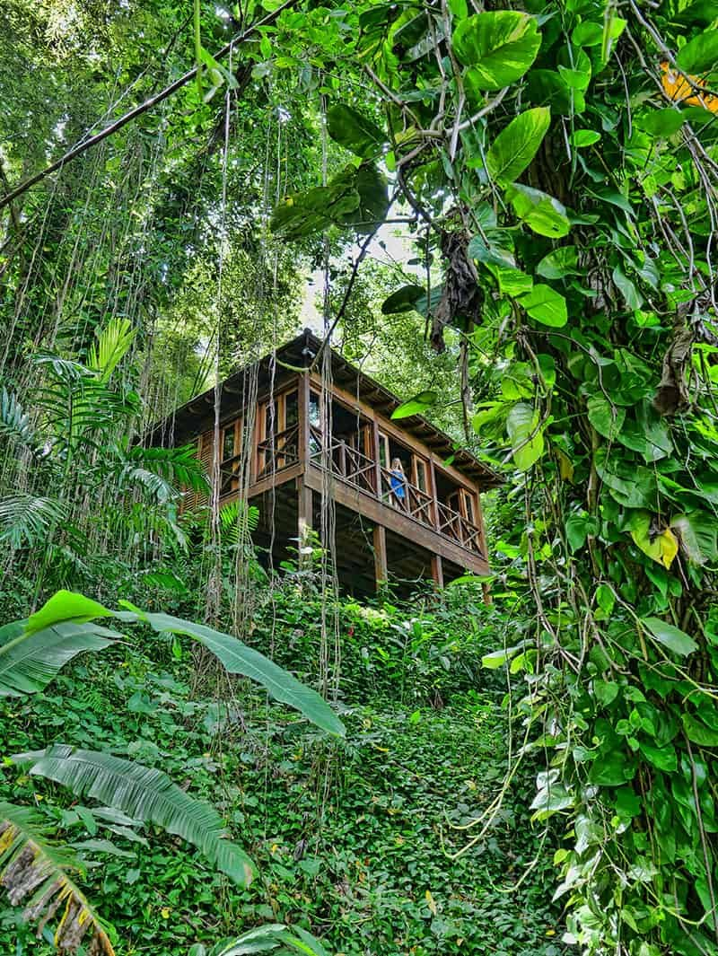 6 Fun Things To Do in Portland, Jamaica