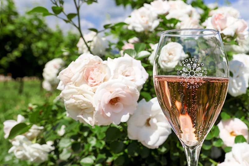 Pink Prosecco DOC Rosé: The Sparkling New Wine Craze