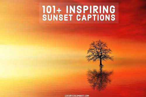 101 SUNSET CAPTIONS FOR INSTAGRAM: FUNNY AND INSPIRING SUNSET QUOTES