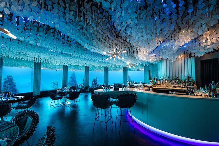 Dine with the fish at this stunning underwater restaurant in Maldives - Luxurylaunches