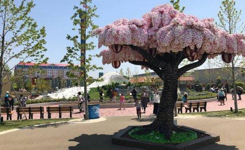 Legoland Japan now has a full blown Sakura tree made from 880,000 Lego bricks : Luxurylaunches