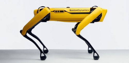 Not your average Golden Retriever – This robotic dog can run, climb stairs, remind others to social distance and it costs more than Tesla Model S car