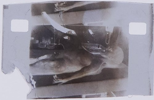 A single frame of the controversial 1947 Alien autopsy film that was recorded following the UFO crash in Roswell is being auctioned as an NFT with an opening bid of $1 million