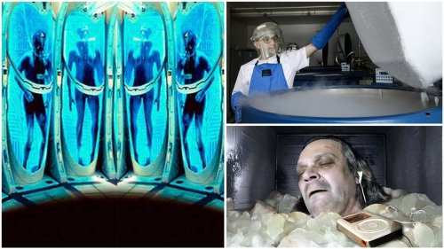 Russian Cryogenics firm owners bitter divorce leads the wife to invade ex-husbands storage. She stole the brains and bodies of wealthy Americans who had paid $36,000 to have their bodies preserved to be later bought to life.