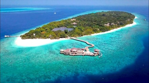 Dream job comes true: Soneva Fushi, a stunning luxury eco-resort in the Maldives is looking for a 'Barefoot Bookseller' to run their island bookshop for 6 months