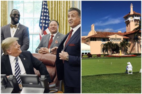Did the Internet just knock out Rocky? Sylvester Stallone openly denies ever joining Donald Trump's exclusive $200,000 membership Mar-a-Lago club.