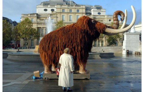 This tech startup just received $15 million to bring the wooly Mammoth back to life
