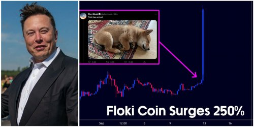 The modern-day King Midas – In under 24 hours the price of an obscure cryptocurrency jumped by 1,000% after Elon Musk named his puppy after it