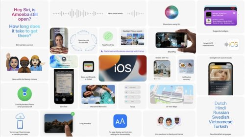 iOS 15.0.2 & iPadOS 15.0.2 sind da › Macerkopf