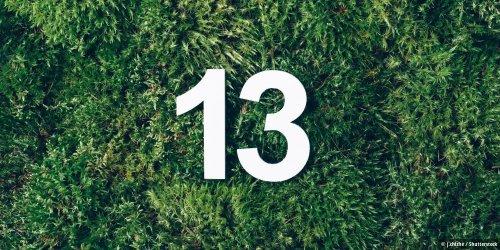 Kein iPhone 12S: Wir bekommen ein iPhone 13