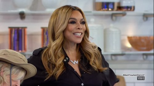 Wendy Williams Hospitalized Over Psychiatric Concerns