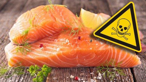 Lachs ist das giftigste Lebensmittel der Welt