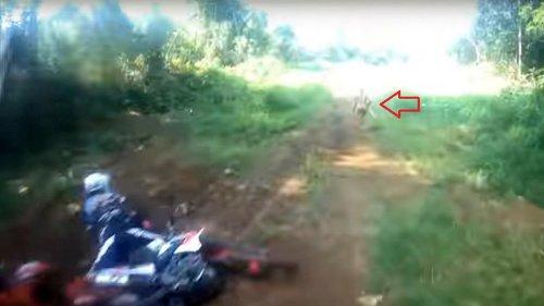 VIDEO: Mysteriöse Attacke: Wald-Kreatur schlägt Biker von Maschine