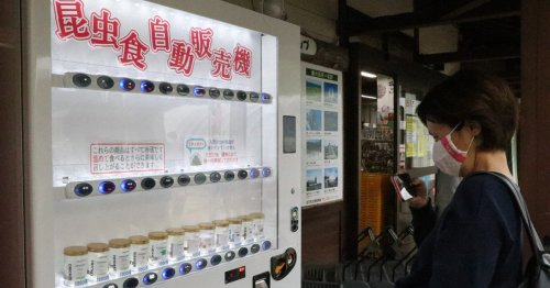 Japanese firm installs vending machine selling nothing but munchable insects - The Mainichi