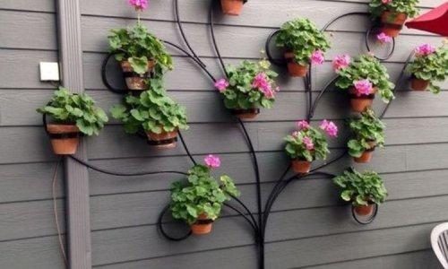 Comment habiller vos clôtures de jardin ? Nos 15 idées