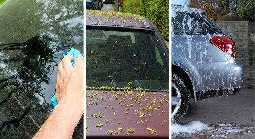 Comment nettoyer le pollen sur sa voiture ? Nos conseils