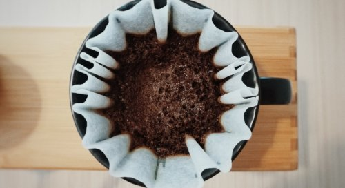 Utilisation du marc de café au jardin : les 9 choses à éviter
