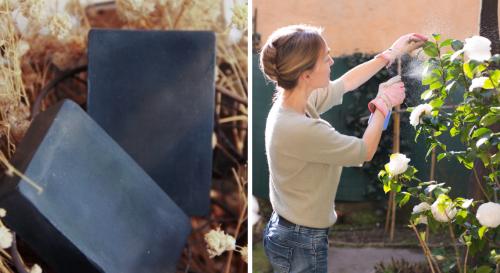 9 façons étonnantes d'utiliser le savon noir au jardin