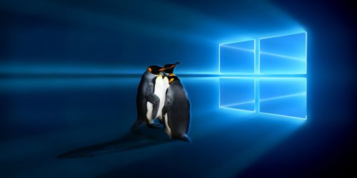 Top 7 Linux Operating Systems You Should Try in a Virtual Machine
