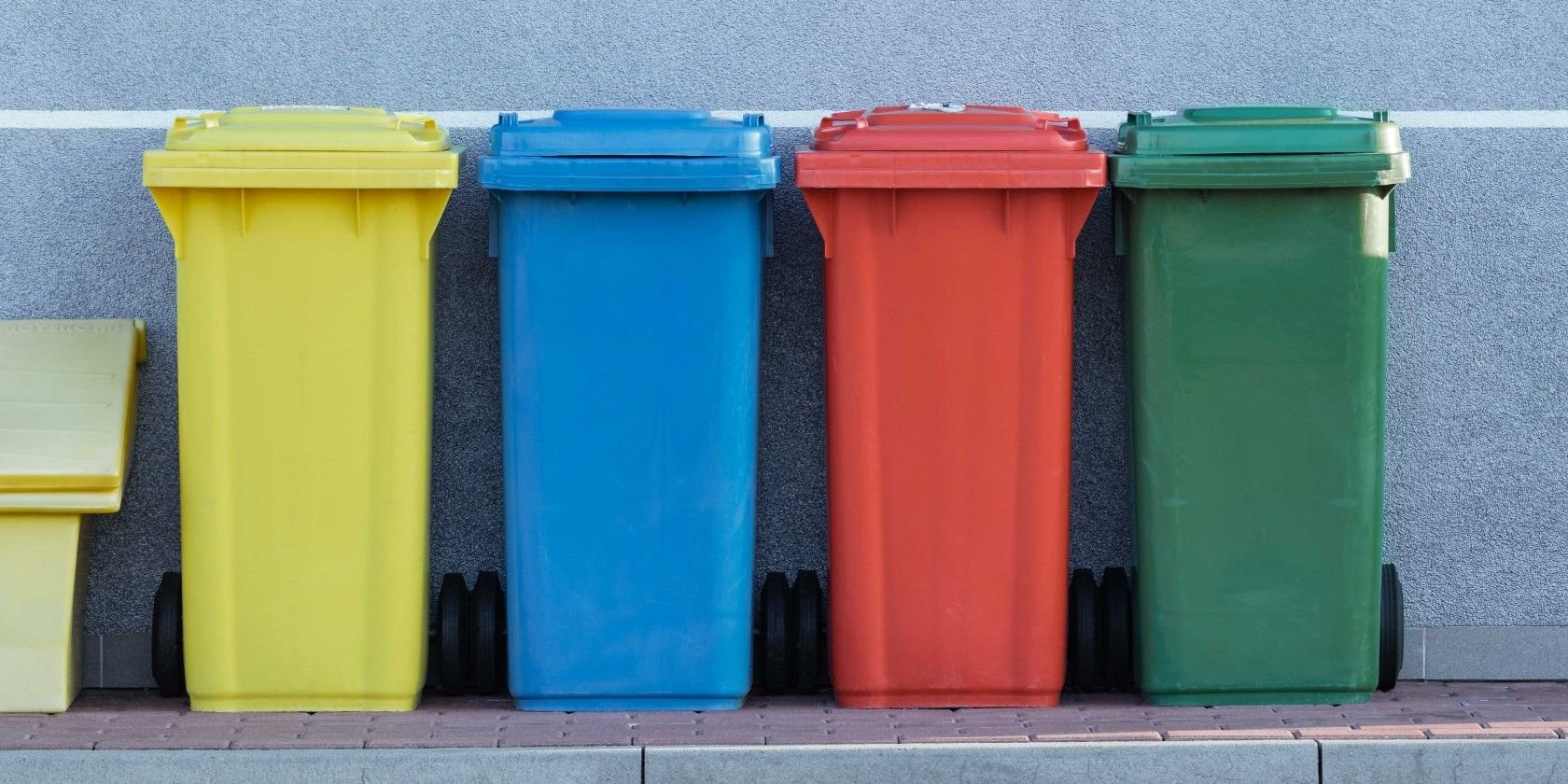 5 Sustainable Sites and Apps to Reduce Waste for an Eco-Friendly World