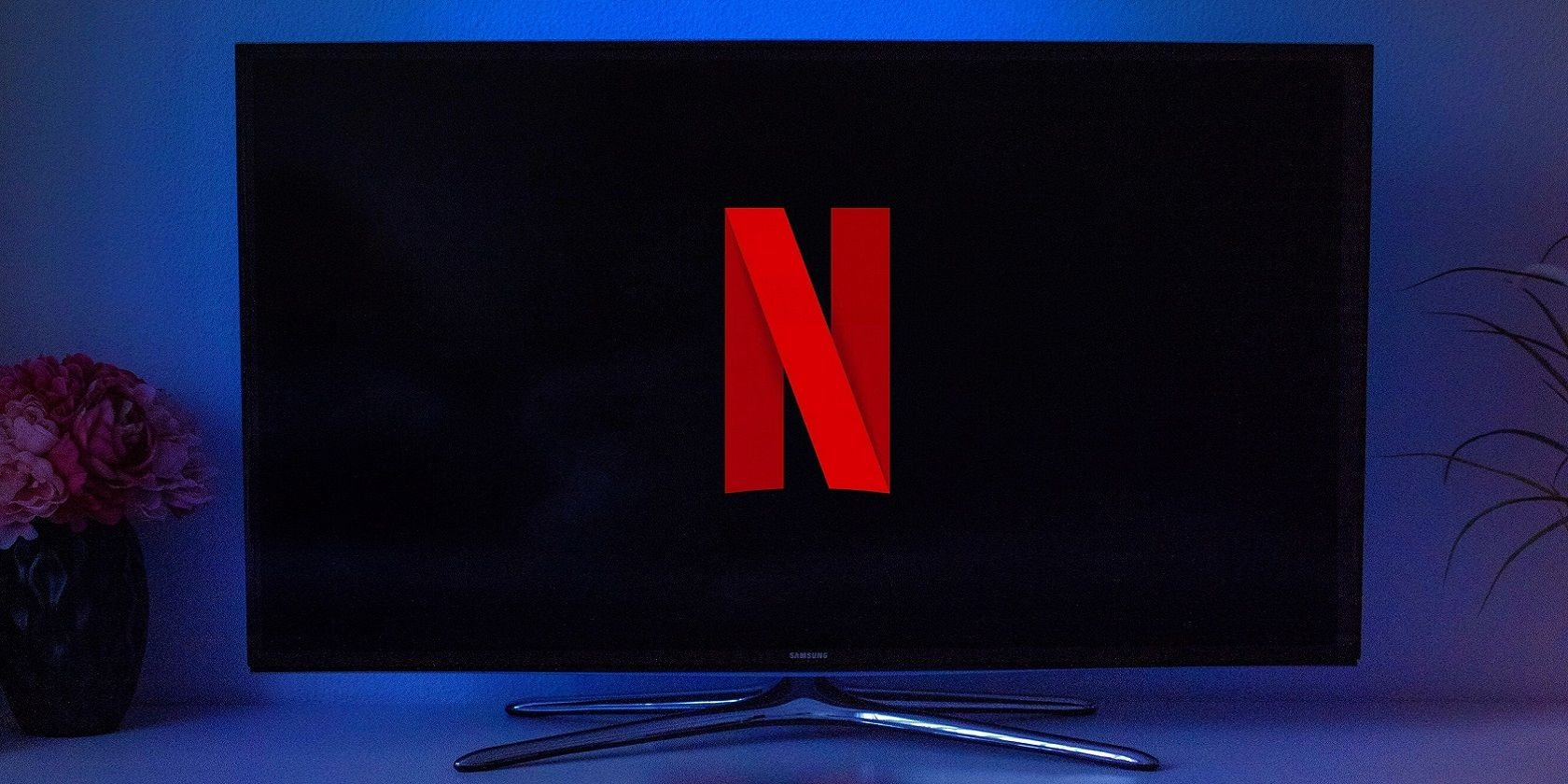 Should Netflix Stop People Sharing Their Passwords?
