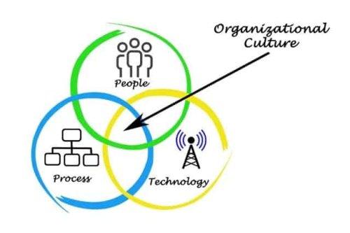 Edgar Schein's Model of Organizational Culture