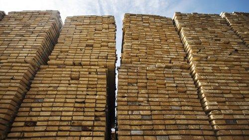 Holzpreisboom: Wie die Forstriesen Stora Enso und SCA profitieren