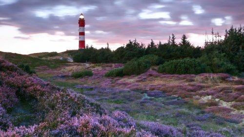 Nordsee-Urlaub Die schönsten Inseln des Wattenmeers