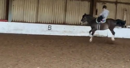 Kate Garraway fans gasp as she shares video of son being thrown from horse