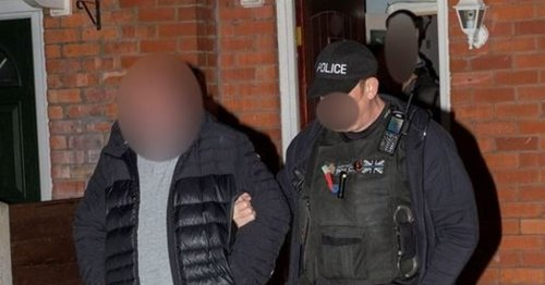 Seven arrested in dramatic dawn raids as part of major drugs investigation