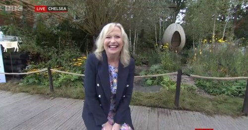 "BBC Breakfast viewers ""howling"" over Carol Kirkwood's dog mishap"