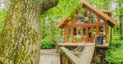Luxury Lancs lakeside treehouse that's perfect for a staycation