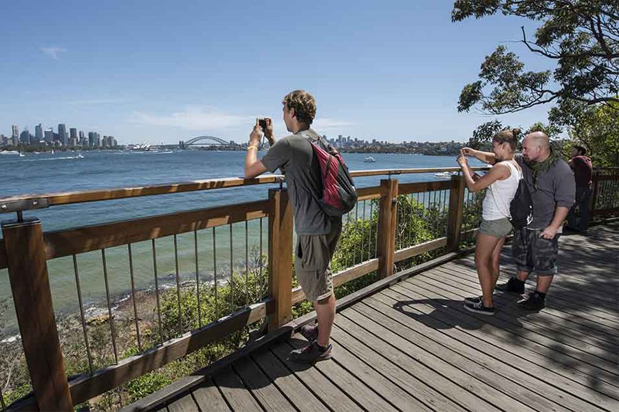 14 Best Walking Tracks and Trails in Sydney