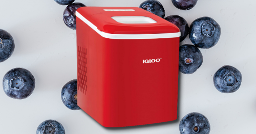 Want to try that 'nature's cereal' from TikTok? You need a good ice maker.