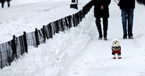 Fans of cold and snow in the U.S. will love this new winter outlook