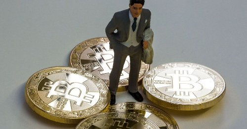 One person is probably responsible for almost 600 percent of Bitcoin's price rise