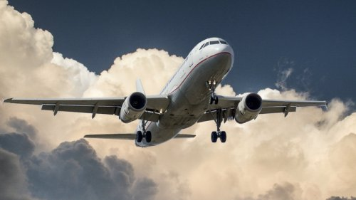 Travel like a pro with this app that can cut flight prices in half