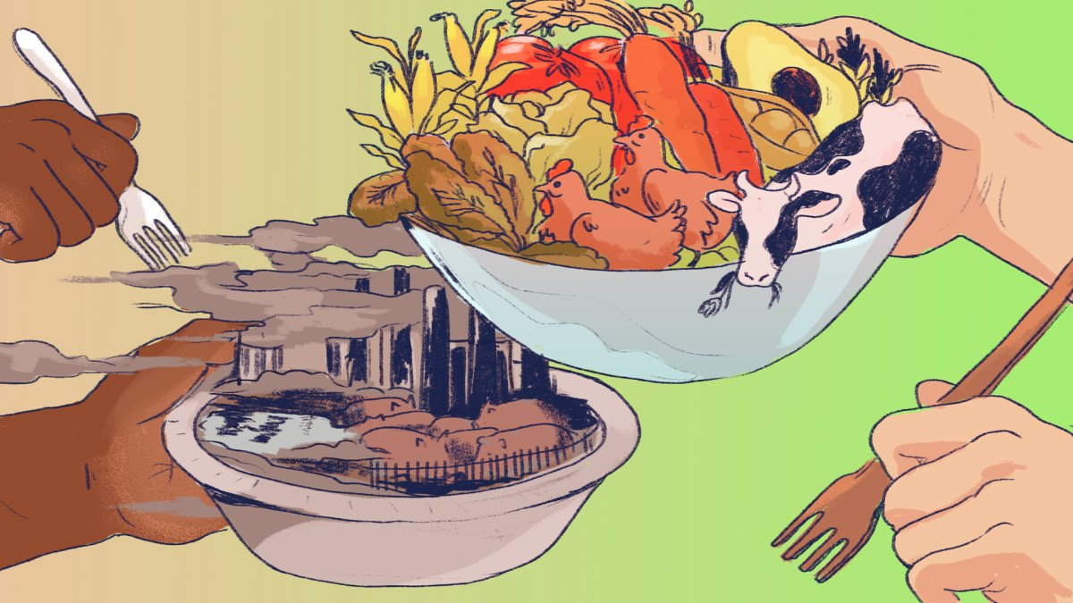 How to combat environmental racism in the food system