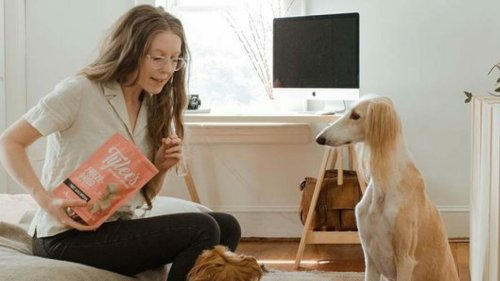 This dog training class bundle and grooming kit will get you ready to be a pet parent