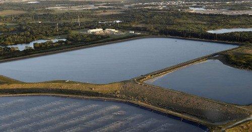 The cost of everyday fertilizer: Toxic flood threatens Florida
