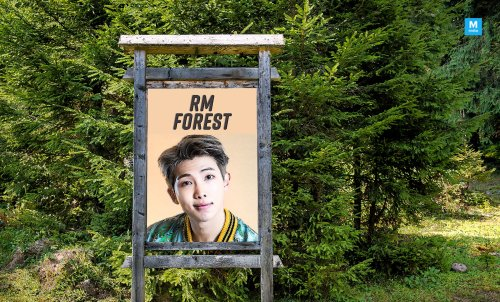 BTS Fans Building a Forest For RM's Birthday Is the Most Sustainable Fandom Gift Ever!