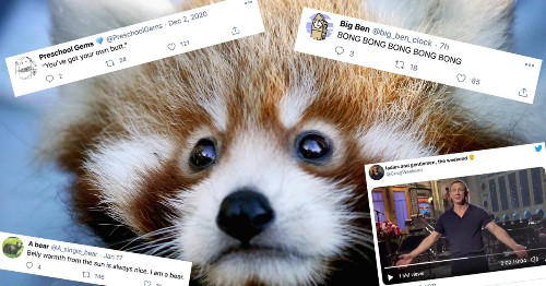 10 Great Twitter Accounts to Infuse Your Feed With Joy - cover