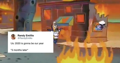 Everyone's regretting their '2020 will be better' tweets now