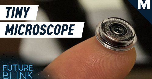 Introducing...a smartphone microscope the size of your finger