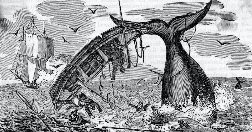 The harsh history behind the internet's favorite sea shanty